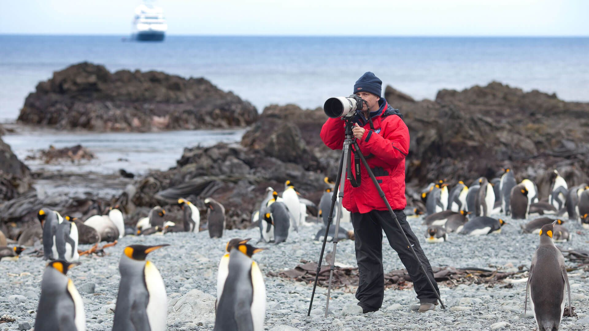 A glimpse of the Galapagos Islands, Southern Ocean